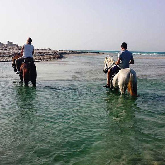 balade chaval plage Djerba