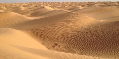 dune-de-zmela